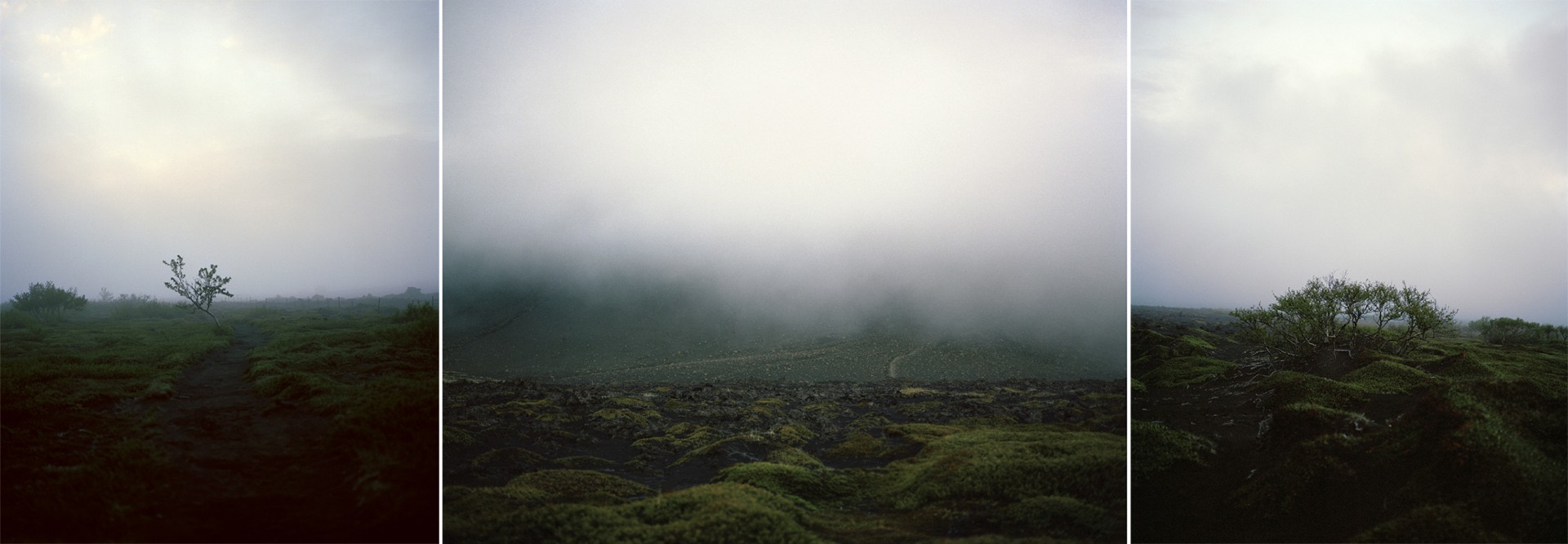MorganLevy_Iceland_011